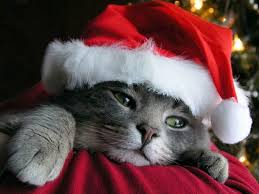 Buon Natale a tutti voi, ma soprattutto...